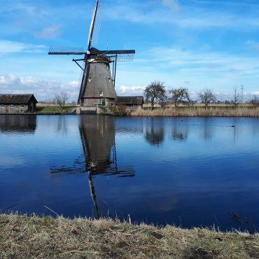 Olanda, nella quiete dei mulini di Kinderdijk.